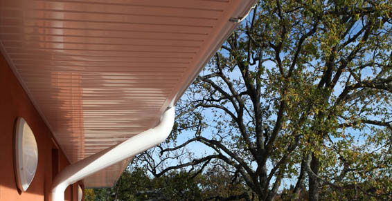 lambris de toit